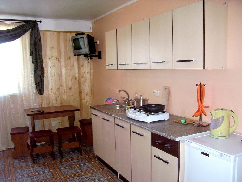 Кухня в номере Студия частного дома отдыха У Натали Крым, Севастополь,, Любимовка